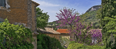 Provence Tectures