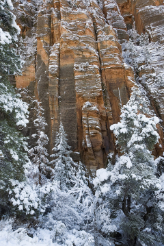 Canyon Wall Snow2