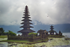 Water Temple and Bird