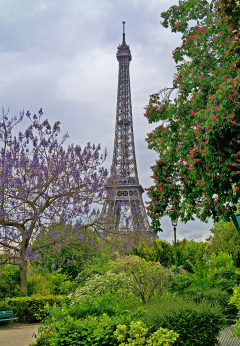 Eifel Tower2