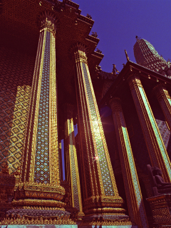 Gold Columes